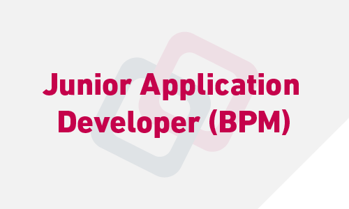 Junior Application Developer (BPM)