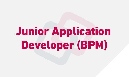 Junior Application Developer (BPM)