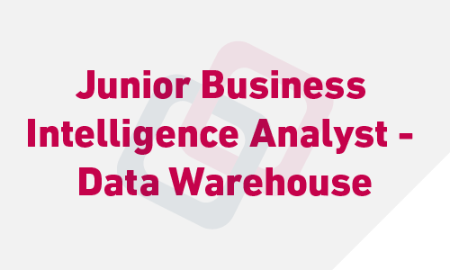 Junior Business Intelligence Analyst