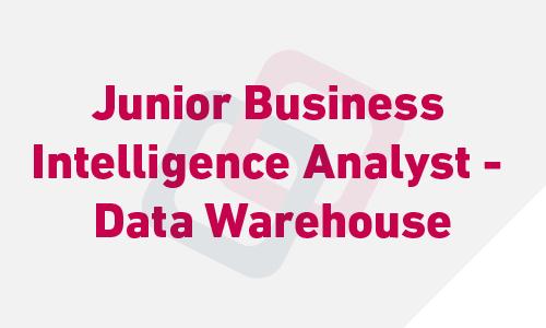 Junior Business Intelligence Analyst